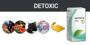 Изчистете Организма си от Паразити с Detoxic