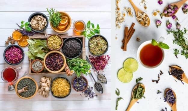 билкови чайове сбор