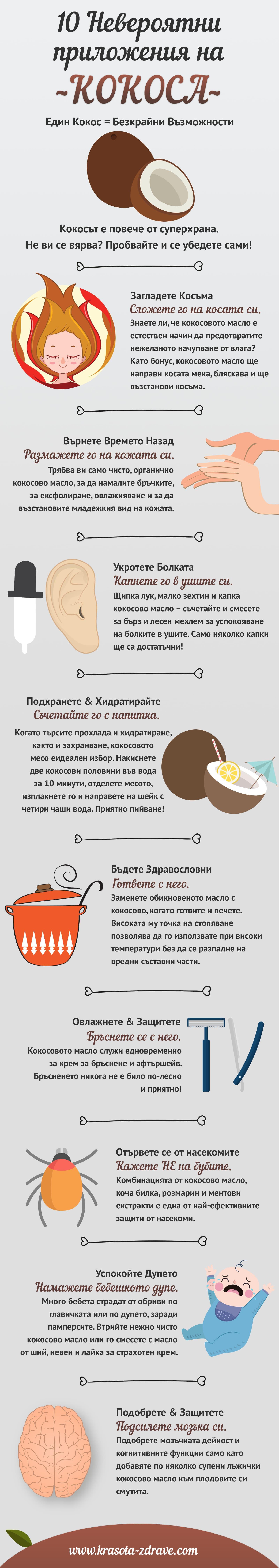 инфографика приложения кокос
