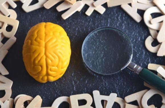 мозък, лупа, букви