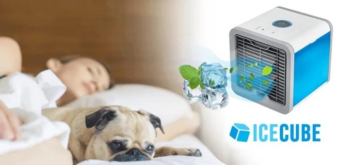 Ice Cube, жена и куче в легло