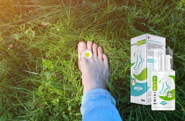 Micinorm, крак с маргаритка