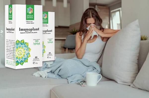 imunoplant, таблетки, грип, вирус