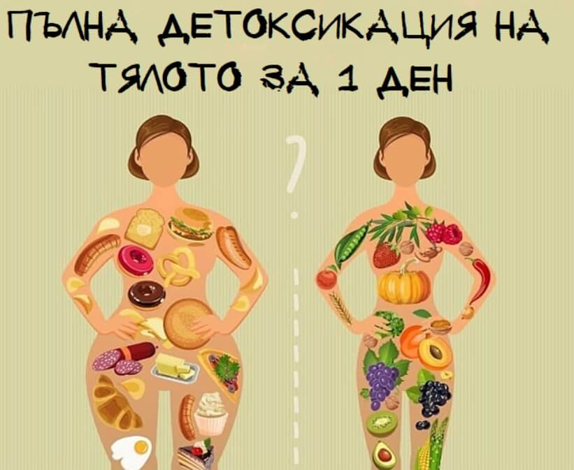 Детоксикацията на Тялото
