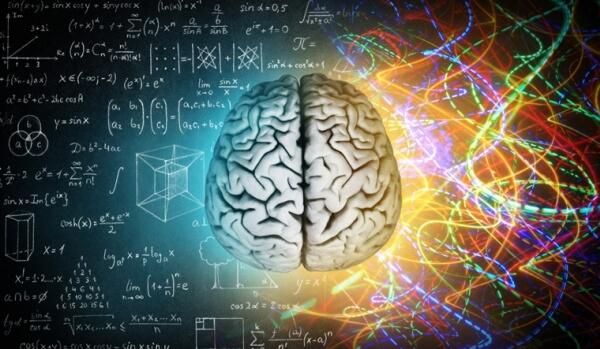 храна за мозъка
