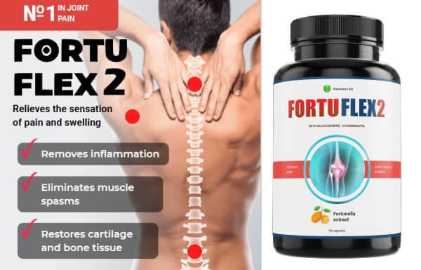 FortuFlex2 - Цена в България